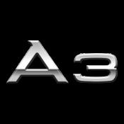 A3 (95)