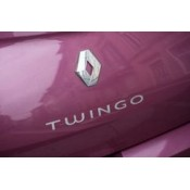 TWINGO (23)