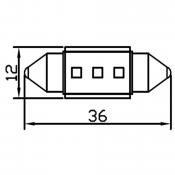 36mm (3)