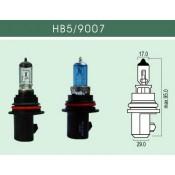 HB5-9007 (1)