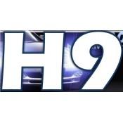 H9 (4)